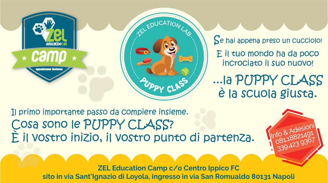 PUPPY CLASS… il vostro punto di partenza!