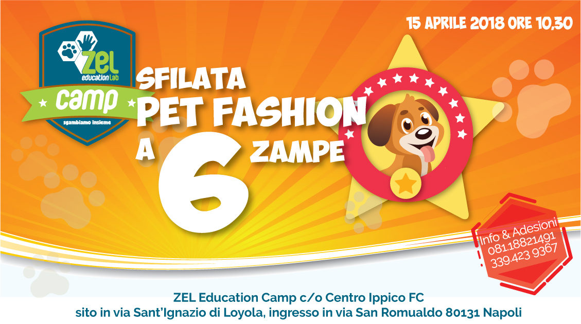 Sfilata PET FASHION a 6 Zampe